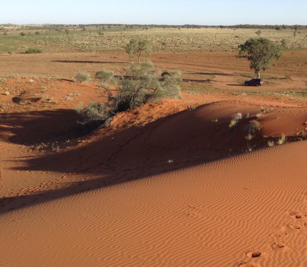 The red sand hills near Windorah