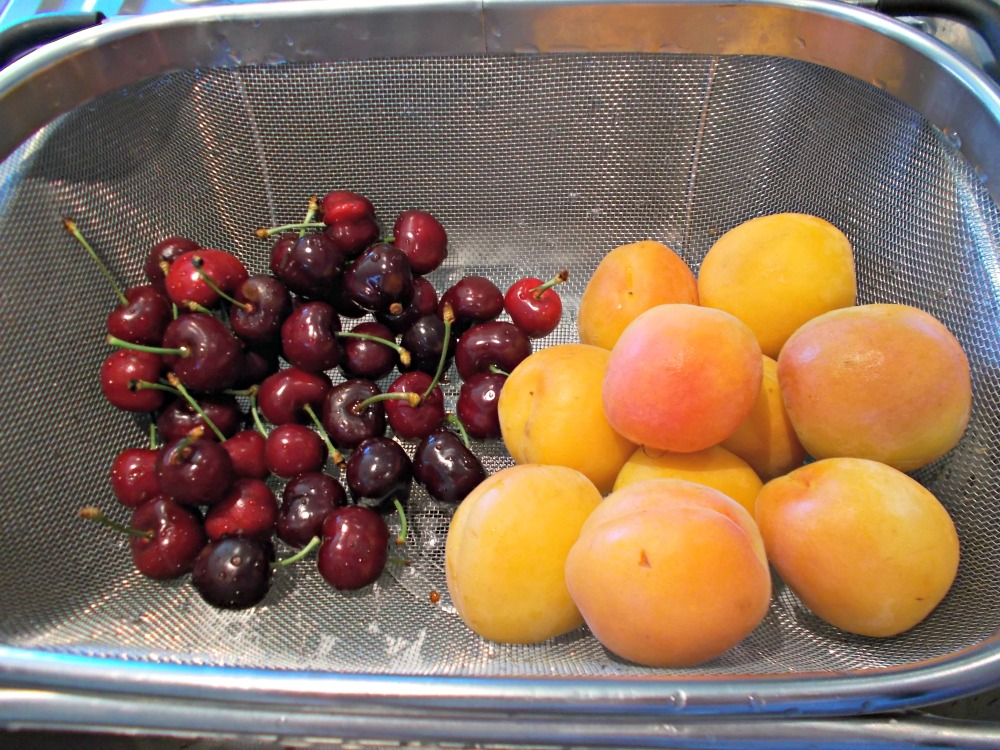 Washed new season cherries and apricots