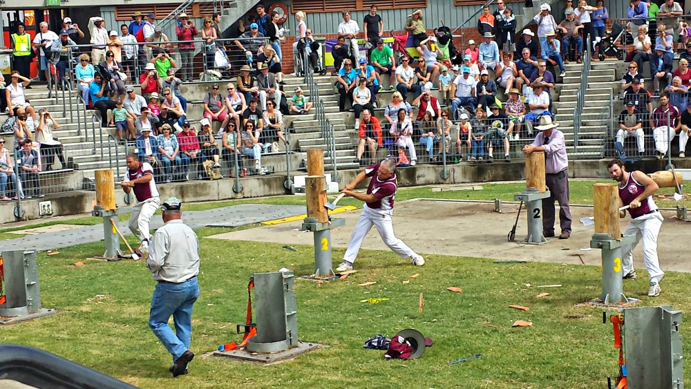 2015 Sydney Royal Easter Show - Woodchopping