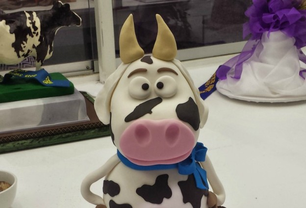 2015 Sydney Royal Easter Show - Cake Competition