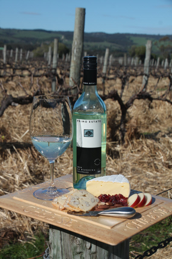 Cheese platter with Primo Estate La Biondina Colombard