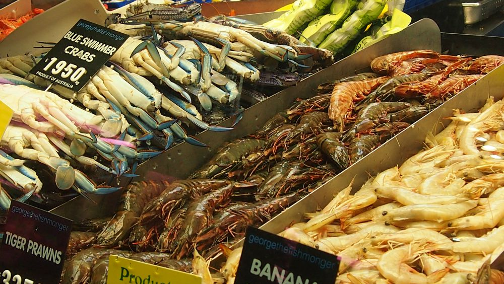 Seafood at Queen Victoria Market