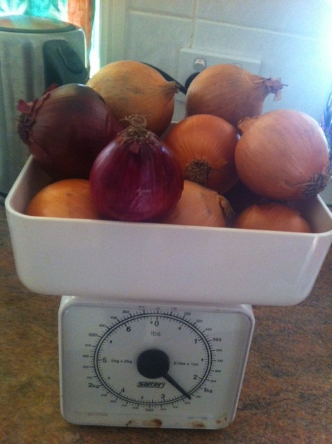Weighing onions for the soup