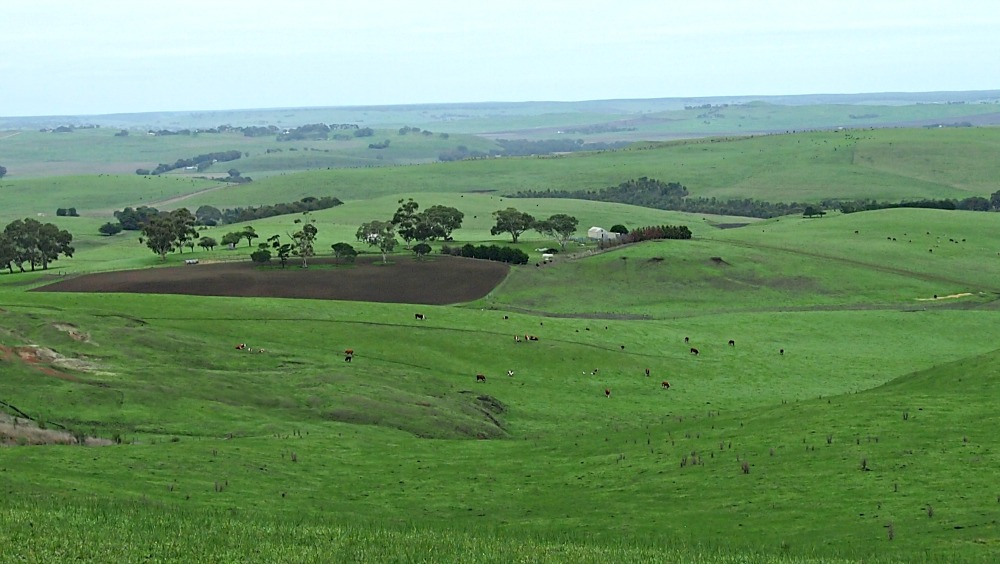 The beautiful view from Muntham Hill, western Victoria