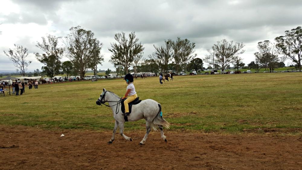 Cute pony at Luddenham Show