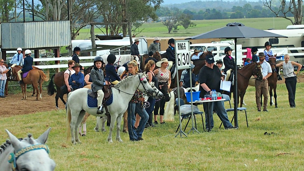 Pony events at Luddenham Show
