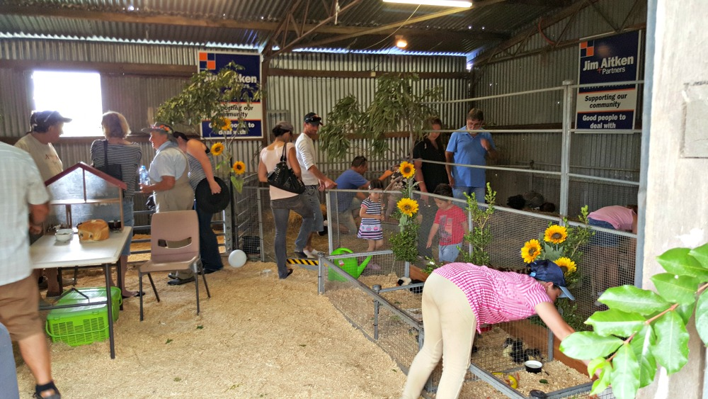 The petting zoo at Luddenham Show