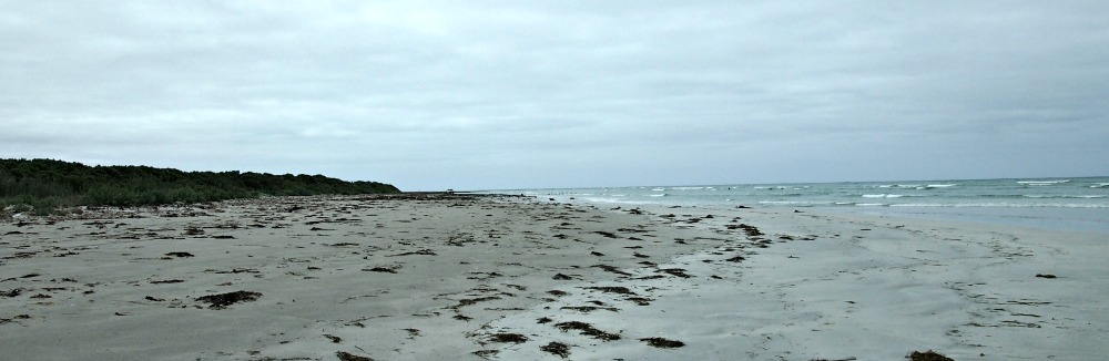 The beach to the east of Port Macdonnell and the inspiration for Admella Beach. Taken in winter.