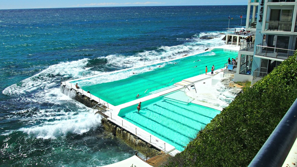 Bondi Icebergs looking gorgeous