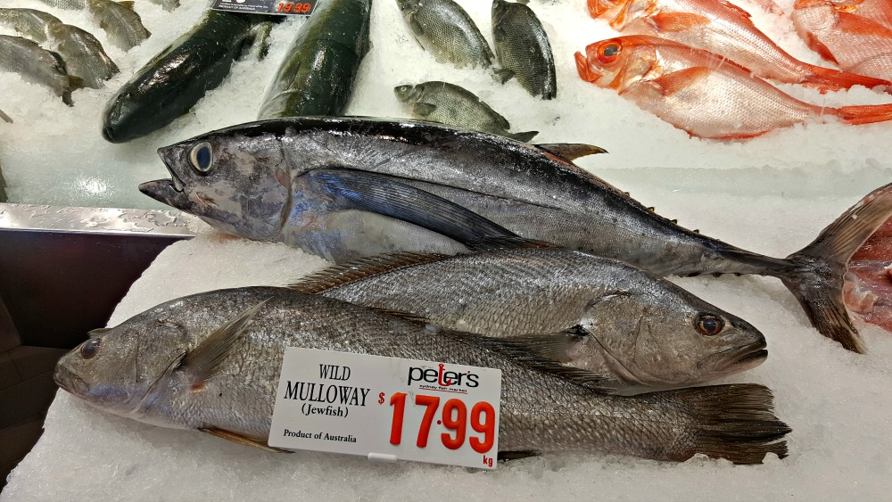 Mulloway - one of my favourite fish.