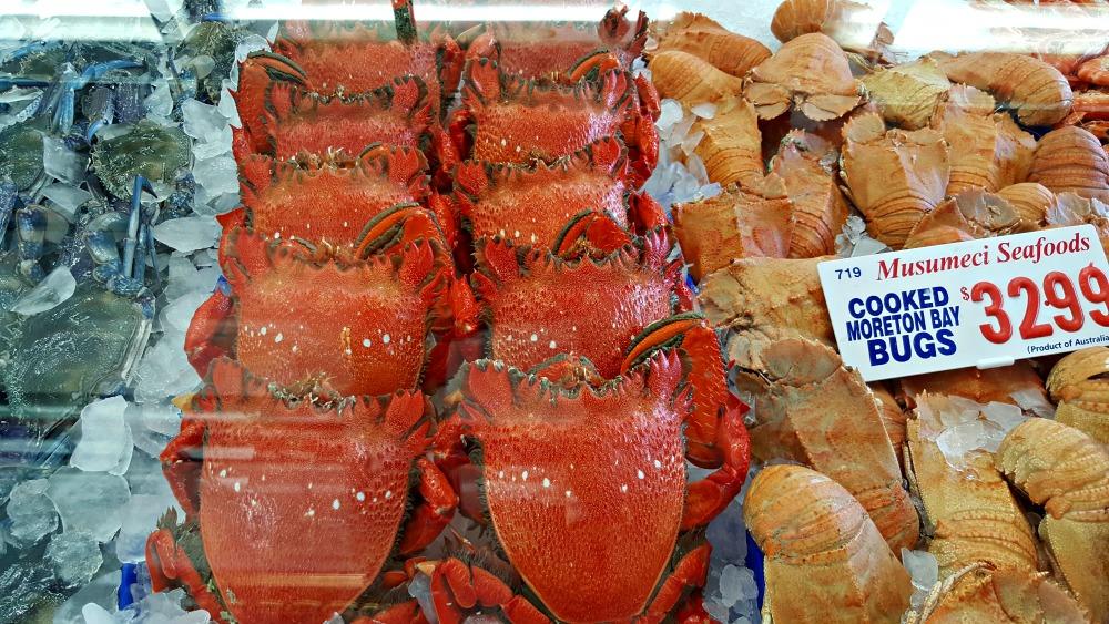 Crab and Morton Bay Bug display