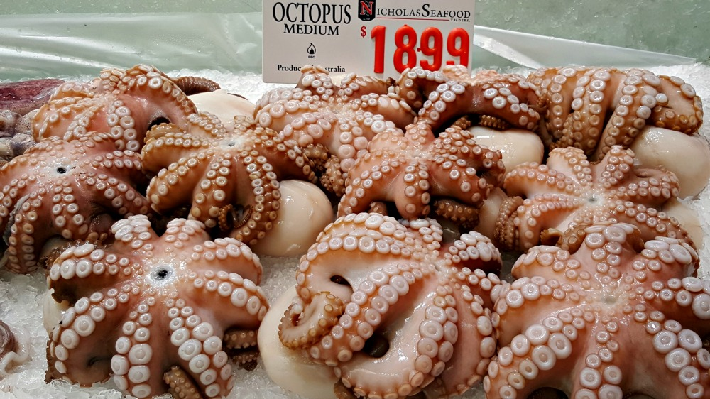 Gorgeous looking octopi.