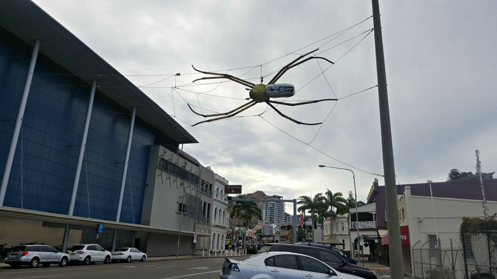 Flinders Street spider