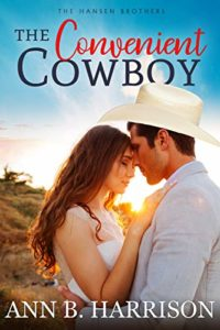The Convenient Cowboy by Ann B Harrison