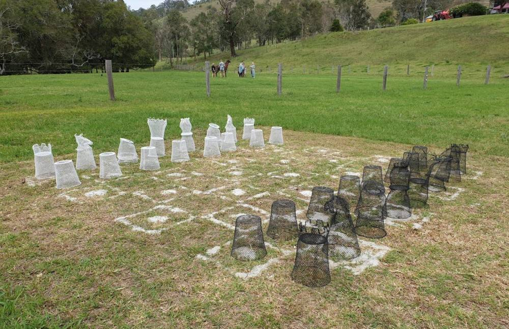 Sculpture on the Farm. Chess Set by Gary Boote.