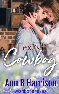Texas Cowboy by Ann B Harrison