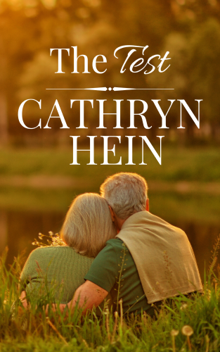 The Test - A short story - cover